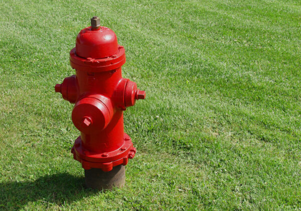A bright red fire hydrant stands on a lush green lawn in Ottawa, Canada.